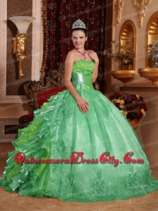 Discount Ball Gown Strapless Green Ruffles Embroidery Quinceanera Dress