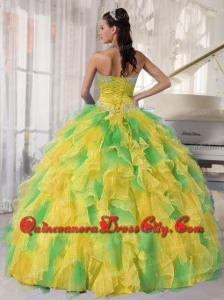 Ball Gown Appliques and Ruffles Organza Long Modern Quinceanera Dresses