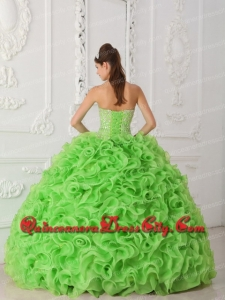 Quinceanera Dresses 2014 Beading and Ruffles Lovely Ball Gown Spring Green Organza Strapless
