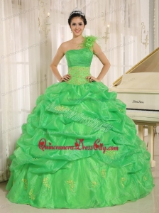 Amazing One Shouler Green Victorian Quinceanera Package