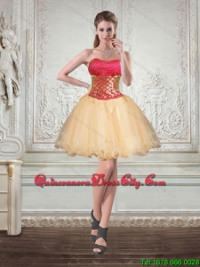 Champagne Strapless Multi Color Short Dama Dresses with Embroidery