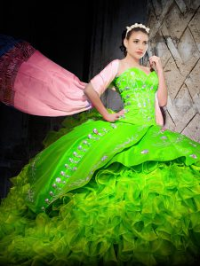Organza Sleeveless With Train Quinceanera Gown Brush Train and Embroidery and Ruffles
