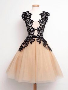 Hot Selling Champagne A-line Lace Quinceanera Court of Honor Dress Lace Up Tulle Sleeveless Knee Length