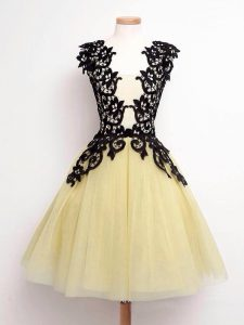 Fantastic Gold A-line Straps Sleeveless Tulle Knee Length Lace Up Lace Damas Dress