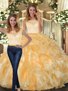 Eye-catching Organza Sleeveless Floor Length Ball Gown Prom Dress and Lace and Ruffles