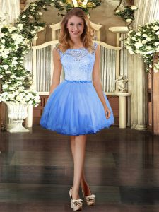 Cute Tulle Scoop Sleeveless Clasp Handle Lace Sweet 16 Dresses in Blue