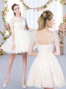 Modern Champagne A-line Scoop Short Sleeves Tulle Mini Length Lace Up Lace Quinceanera Court Dresses