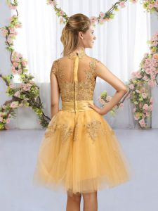 Gold A-line High-neck Cap Sleeves Tulle Knee Length Zipper Lace and Bowknot Court Dresses for Sweet 16