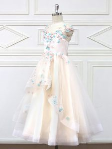 High Class Floor Length A-line Sleeveless Champagne Flower Girl Dresses for Less Zipper