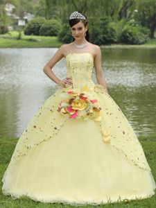Appliques Embroidery and Flowers Dress for Quince in Light Yellow