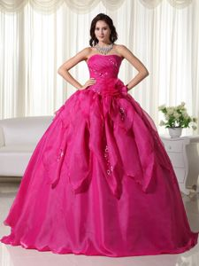 Appliques and Beaded Quinceanera Dresses Organza with Floor-length