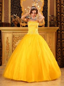 Spaghetti Straps Quinceanera Gown Dresses Appliques Satin and Tulle