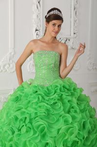 Appliqued and Ruffled Green Sweet Sixteen Quinceanera Dresses