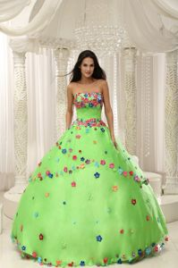 Spring Green Strapless Quinceanera Gown with Floral Appliques